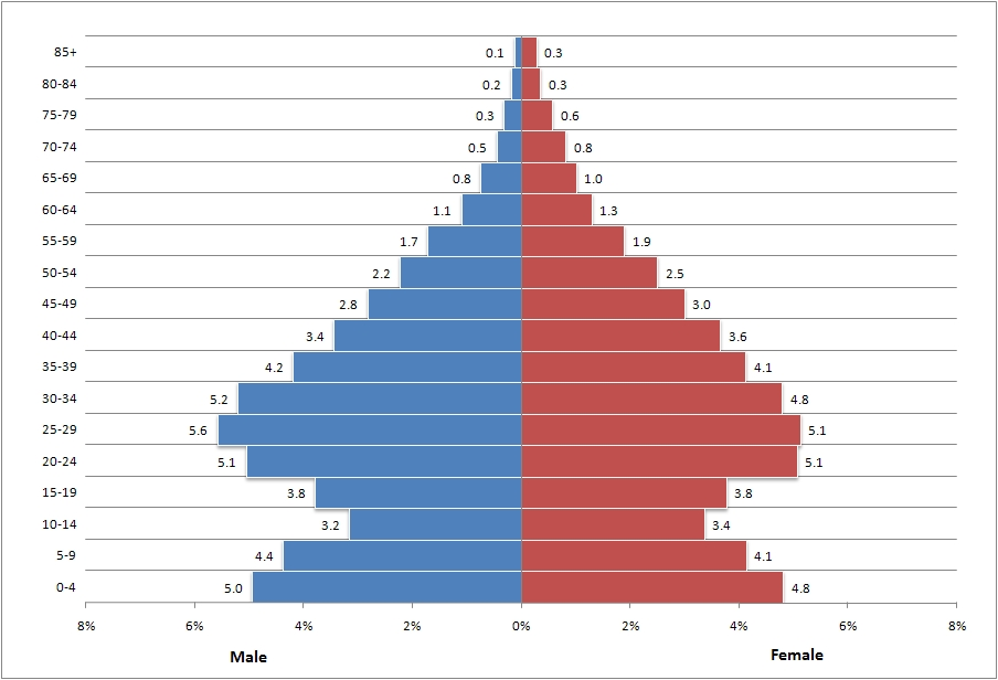 creating a population pyramid in excel